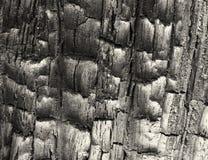 Volledig kaderbeeld van zwart verkoold gebrand hout met glanzende geweven korrel royalty-vrije stock afbeelding