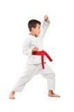 Volledig lengteportret van karatejong geitje het stellen Royalty-vrije Stock Fotografie