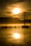 Volledig maanlicht Stock Foto's