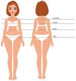 Volledige de lengtevoorzijde en rug van het vrouwenlichaam royalty-vrije illustratie