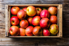 Volledige doos van verse rode appelen Hoogste mening, exemplaarruimte Het concept van de oogst De herfst verlaat grens met divers stock fotografie