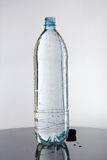 Volledige fles water Royalty-vrije Stock Foto's