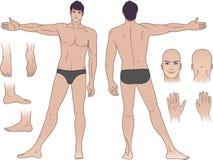 Volledige lengte (voorzijde & rug) meningen van een bevindende mens Stock Foto's