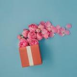 Volledige rode giftdoos van roze rozen op blauwe achtergrond stock foto