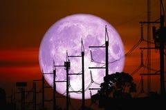 Volledige Rose Moon terug op lijn en de pool van de silhouetmacht de elektrische op nachthemel stock afbeeldingen
