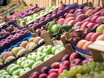 Voller Rahmenhintergrund von verschiedenen Früchten an einem Marktstall Fokus in der Mitte Lizenzfreies Stockbild