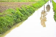 Voller Wassergraben auf einem Gebiet Stockbilder