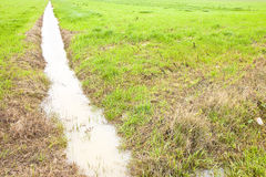Voller Wassergraben auf einem Gebiet Lizenzfreies Stockfoto