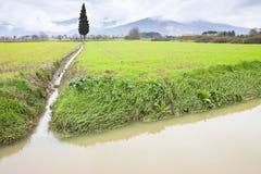 Voller Wassergraben auf einem Gebiet nach Regenflut Lizenzfreie Stockfotografie