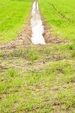 Voller Wassergraben auf einem Gebiet nach Regenflut Stockbilder
