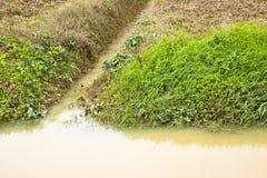 Voller Wassergraben auf einem Gebiet nach Regenflut Stockfotografie