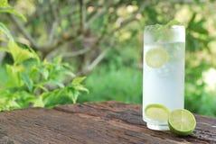 Volles Glas frisches kühles Stärkungsmittel mit Kalk trägt Früchte Lizenzfreie Stockfotos