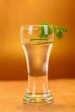 Volles Glas frisches kühles Stärkungsmittel mit Kalk trägt Früchte Lizenzfreies Stockbild