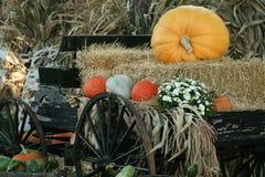 Volles Halloween Stockbilder