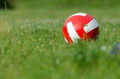 Volley σφαίρα στη χλόη Στοκ φωτογραφία με δικαίωμα ελεύθερης χρήσης