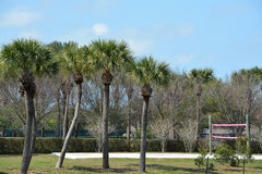 A volley ball or badminton court in Saint Petersburg, Florida. Stock Image