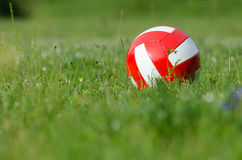 Volley ball on Grass Royalty Free Stock Photo