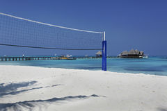 Volley ball sand. Maldives beach and palm tree in sunny day volley ball Stock Photography