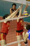 Volley ball women's team of china Royalty Free Stock Image