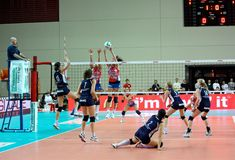 Volley - Volleyball match, action stock photography