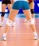 Volley women Royalty Free Stock Photos