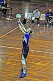 Volleybalabgleichung Lizenzfreie Stockbilder