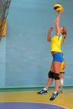 Volleybalabgleichung der Frauen Stockbilder