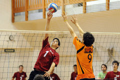 Volleyball action stock images