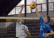 Volleyball action Royalty Free Stock Images