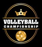 Volleyball ball Royalty Free Stock Images