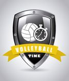 Volleyball ball Royalty Free Stock Photography