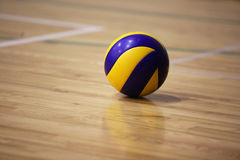 Volleyball ball on the floor. Of the hall stock image