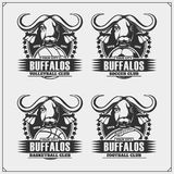 Volleyball, base-ball, football et logos et labels du football Emblèmes de club de sport avec le buffle illustration libre de droits
