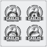 Volleyball, baseball, soccer and football logos and labels. Sport club emblems with eagle. Stock Photo