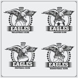 Volleyball, baseball, soccer and football logos and labels. Sport club emblems with eagle. Royalty Free Stock Photography