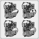 Volleyball, baseball, soccer and football logos and labels. Sport club emblems with grizzly bear. Print design for t-shirts. Vector vector illustration