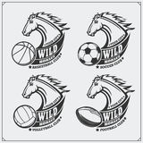 Volleyball, baseball, soccer and football logos and labels. Sport club emblems with horse. Royalty Free Stock Image
