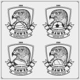 Volleyball, basket-ball, football et logos et labels du football Le club de sport symbolise avec le faucon Conception d'impressio illustration stock