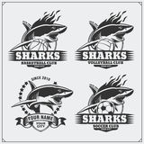 Volleyball, basketball and soccer logos and labels. Sport club emblems with shark. Royalty Free Stock Photos