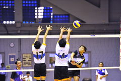 Volleyball chalege in thailand Royalty Free Stock Images