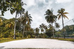 Volleyball court in tropical resort surrounded by palms. Wide-angle frontal view of the volleyball court: coral sand on the ground, multiple palm trees and other royalty free stock photography