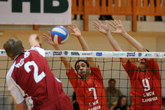 volleyball d'action Photographie stock libre de droits