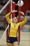 Volleyball 2015 de NCAA - Kent State et Morgan State Photos stock
