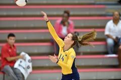 Volleyball 2015 de NCAA - Kent State et Morgan State Photo libre de droits