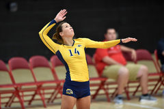Volleyball 2015 de NCAA - Kent State et Morgan State Photographie stock