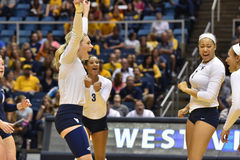 2015 volleyball de NCAA - le Texas @ la Virginie Occidentale Photographie stock libre de droits
