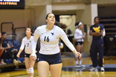 2015 volleyball de NCAA - le Texas @ WVU Images libres de droits