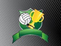 volleyball de trophée Image stock