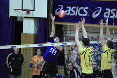 Volleyball - Dominik Fort Stock Photo