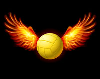Volleyball Emblem Stock Photography